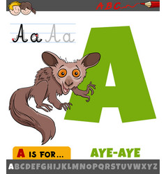 Letter a from alphabet with cartoon aye-aye vector