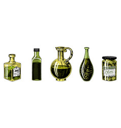 olive oil of trees in bottle and jars with vector image