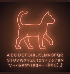 Witch cat neon light icon sorceress pet magic cat vector