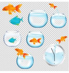 fish and aquariums set vector image vector image