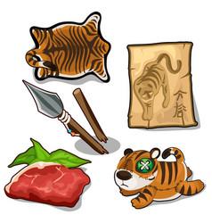 tiger weapon meat skin endangered concept vector image vector image