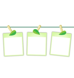 Blank Photos with Green Leaves on Clothesline vector image