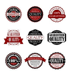 Premium quality and guarantee labels set vector image