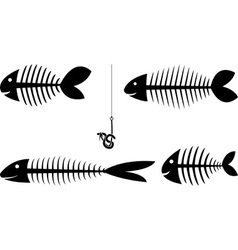 set fish sceletons vector image