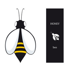 bees honey vector image