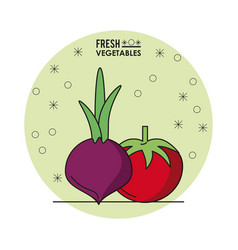 Colorful poster of fresh vegetables with beet and vector