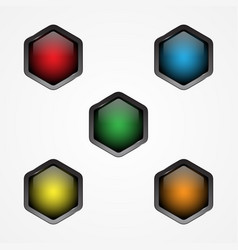 hexagon button vector image