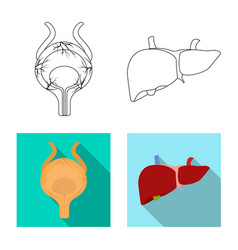 Isolated object of body and human icon collection vector