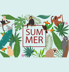 monkeys and tropical leaves and summer frame vector image