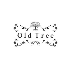 old trees logo designs vector image