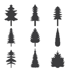 set abstract stylized black trees silhouette vector image