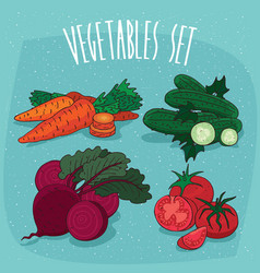 Set isolated vegetables with sections and slices vector