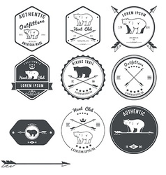 Set vintage bear icons emblems and labels vector