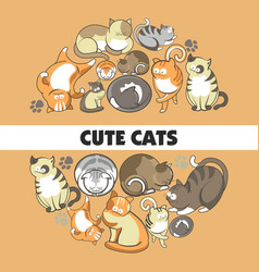 cute cats poster of kittens pets playing or vector image