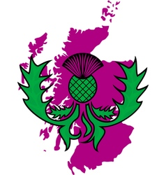 flower of the thistle on a background map of vector image