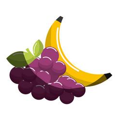 Grape and babana fruit icon vector