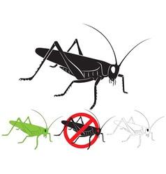 Locust vector image