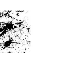 abstract splatter black color background vector image