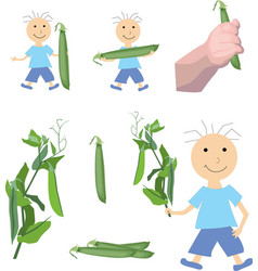 boy holding a pea objects on white background vector image