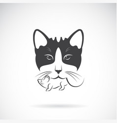 cat catches a rat in the mouth on a white vector image