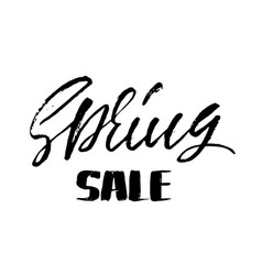 handwritten lettering spring sale hand drawn vector image