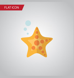 isolated starfish flat icon sea star vector image