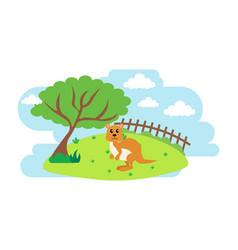 Kangaroo cute animals in cartoon style wild vector