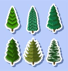 Pine tree sticker vector