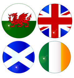 buttons of the uk and eire vector image