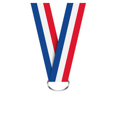 French ribbon for medal french tricolor vector