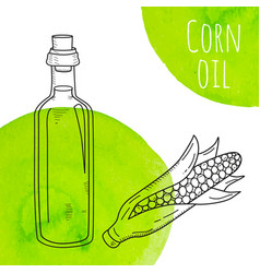 Hand drawn corn oil bottle with green watercolor vector