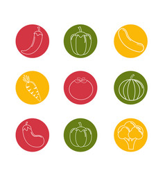 Organic vegetables background icon vector