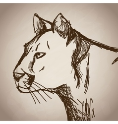 Panther portrait forest hand drawing vintage vector