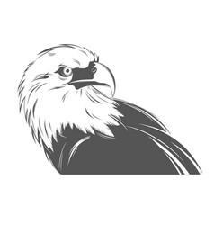 Eagle head in black and white style vector