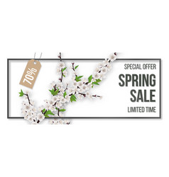 Spring sale frame blooming branches vector