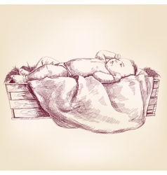 Baby Jesus in the manger hand drawn llustration vector