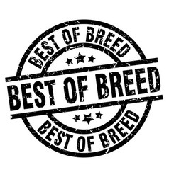 Best of breed round grunge black stamp vector