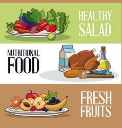 brochure food healthy nutrition fresh vector image