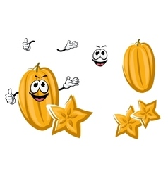 Cartoon yellow carambola or starfruit vector image