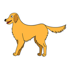 Cute cartoon golden retriever isolated on white vector