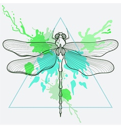 Entangle stylized dragon fly in triangle frame vector
