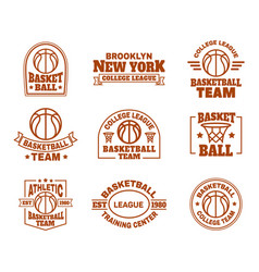 logo or icons for basketball sport team vector image