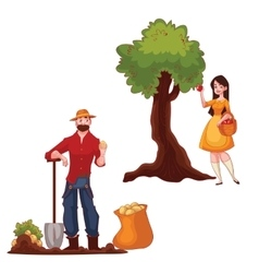Man harvesting potato and woman picking apples vector image