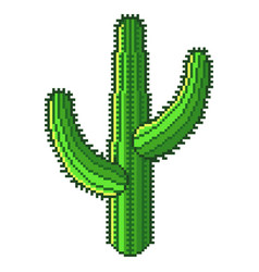 pixel green desert cactus detailed isolated vector image