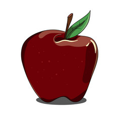 Red isolated apple on white background vector