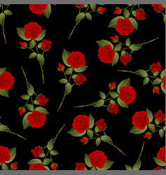 red rose bouquet on black background vector image