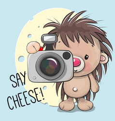 cute cartoon hedgehog with a camera vector image vector image