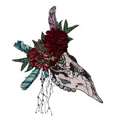 sketch animal skull vector image