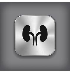 Kidneys icon - metal app button vector image vector image