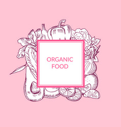 doodle cketched fruits and vegetables vegan vector image